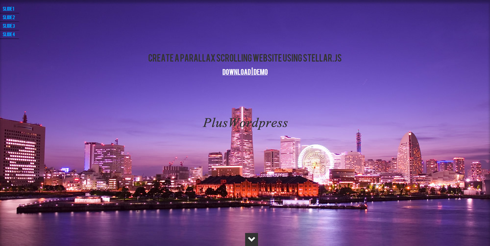 Plus WordPress Demo Site12