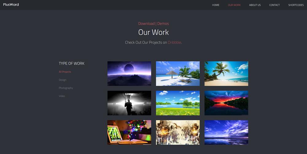 Plus WordPress Demo Site14
