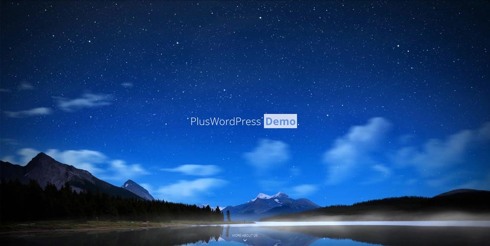 Plus WordPress Demo Site3