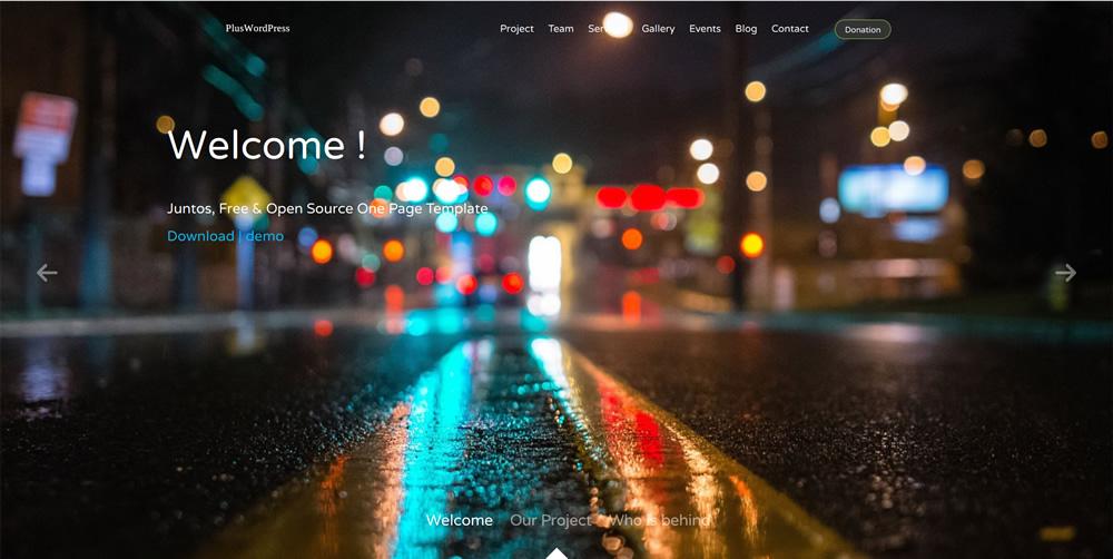 Plus WordPress Demo Site4